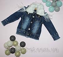 """Куртка детская джинсовая с воротником  на девочку 1-5 лет """"Golden Image""""купить недорого от прямого поставщика"""