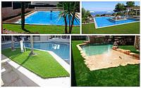 Декоративная трава вокруг бассейна