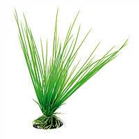 Пластиковое растение для аквариума Ferplast BLU 9057 - ACORUS