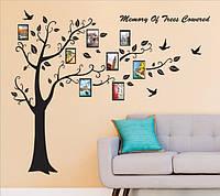 Декоративная наклейка - Семейное дерево  (250х180см)