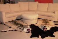 Шкура волка, фото 1