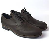 Туфли броги кожа коричневые мужская обувь больших размеров Rosso Avangard Felicite Brown Crazy Leather BS, фото 1