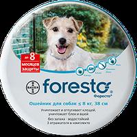 Ошейник Bayer Форесто от блох и клещей для собак и молодых пород кошек 38 см