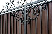 Кованые ворота и калитка  В-07, фото 3