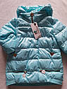 Модная осенняя курточка на девочку Юля с отстежным довязом на рукаве Размеры 122-152, фото 5