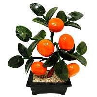 Мандариновое дерево (5 плодов)