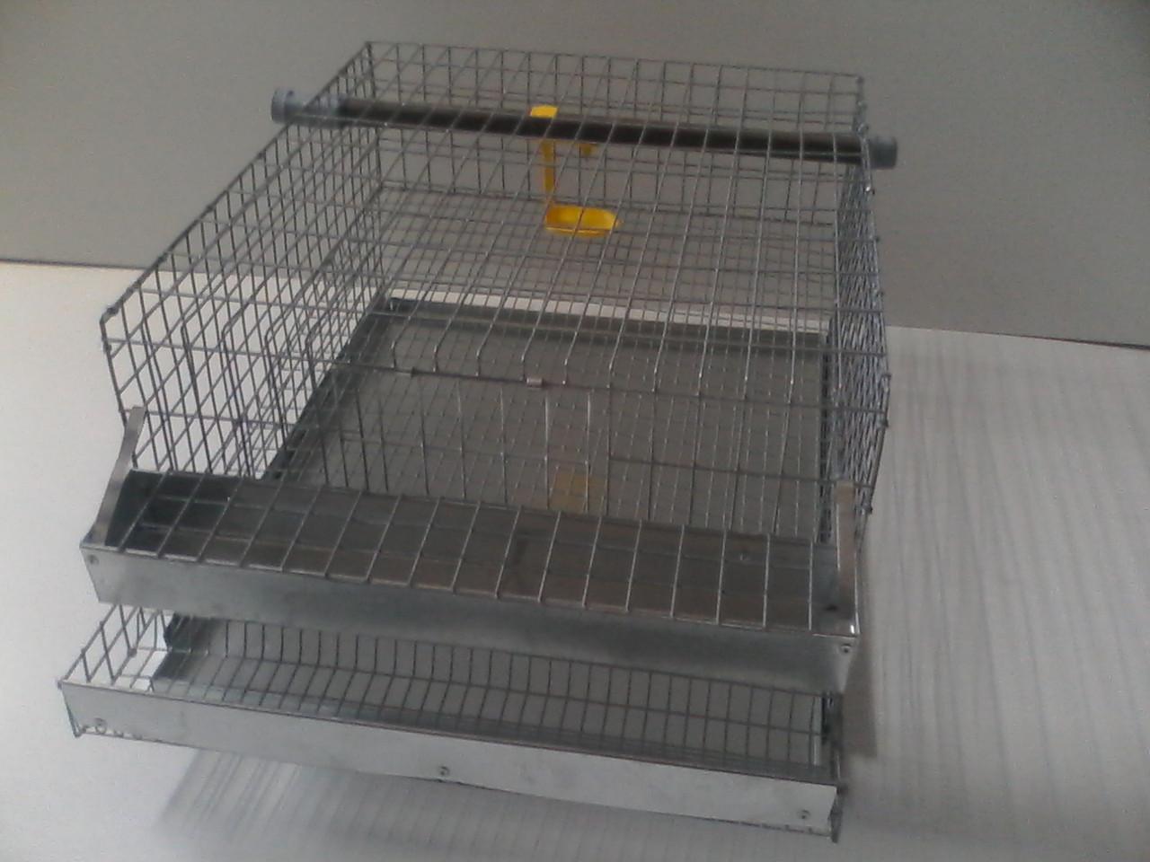 КП (Клетка для перепелов) - фото 1