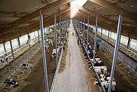Строительство,ремонт и реконструкция ферм КРС,свиноферм.пром строений ю, фото 1