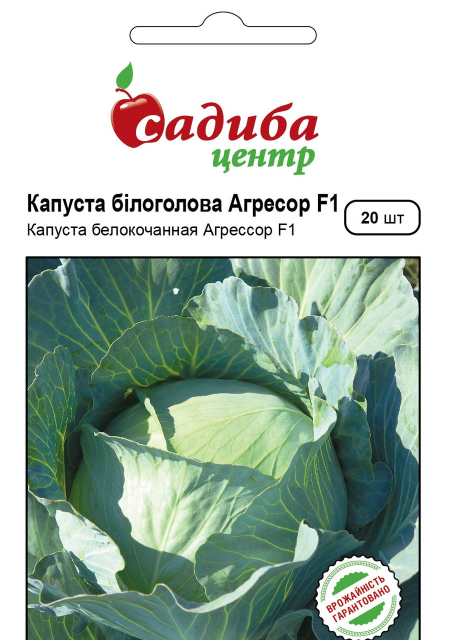 Семена капусты Агрессор F1, 20 семян, Syngenta (Садыба Центр)
