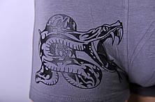 Мужские трусы - боксеры C+3 #772 M темно серые, фото 3