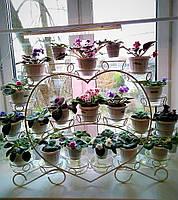 Фиалка-2, подставка для цветов на 20 чаш