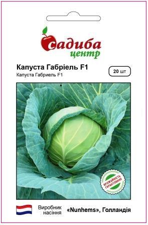 Семена  белокочанной капусты Габриель F1, Nunhems 20 семян (Садиба Центр) для жарких условий выращивания