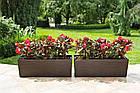 Кашпо пластикове ящик прямокутний квітник ДОЛОТО Бегонія (Білий), фото 2