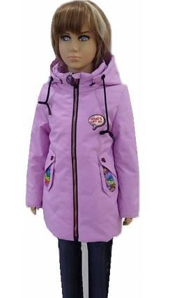Куртка Паетка, фото 2
