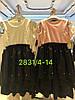 Платье для девочек оптом, 4-14 лет,  № 2831