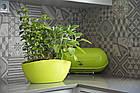 """Горшок пластиковый для орхидей """"Луна"""" непрозрачное (светло-зеленый), фото 5"""