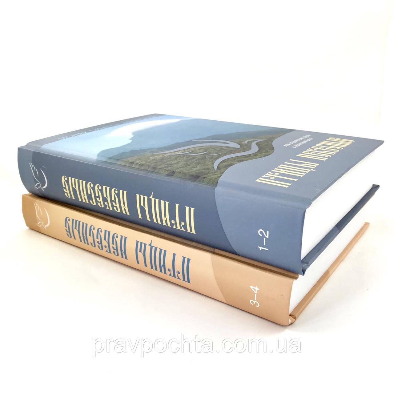 Птицы небесные или странствия души в объятиях Бога. Монах Симеон Афонский. В 2-х томах