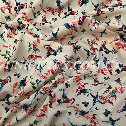 Штапель принт колибри на бежевом, фото 2