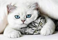 Алмазная вышивка два котика 30х40 см