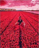 Картина по номерам Она в поле тюльпанов, 40x50 см, подарочная упаковка