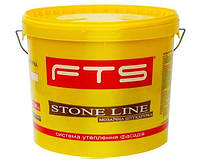 Штукатурка Мозаичная FTS Stone Line DECOR