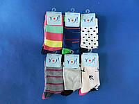 """Шкарпетки (розмір 40-42) бавовна жіночі """"YO SCORPIO"""" Польща"""