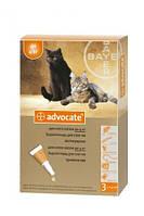 Advocate (Адвокат®) капли для кошек весом до 4 кг