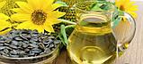 Лінія Фільтрації ЛФ-3, фільтр рослинного масла, фото 3