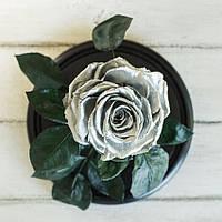 Стабилизированная роза в колбе Lerosh - Lux 33 см, Silver Серебро - 138953