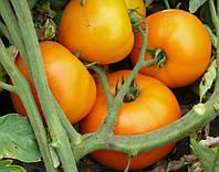 Томат Свит Сан F1 Lark Seeds 500 семян