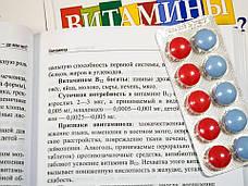 """""""Витамины: да или нет?"""" Эдита Уберхубер, фото 3"""