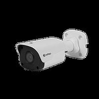 Smart IP камера ZetPro ZIP-2122LR3-PF40 (light)
