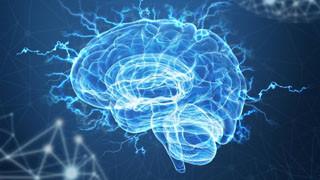 Ресвератрол для мозга