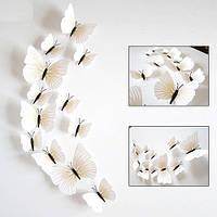 (12 шт) Набор бабочек 3D (на магните), КРЕМОВЫЕ