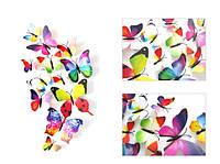 (12 шт) Набор бабочек 3D (на магните), РАДУЖНЫЕ