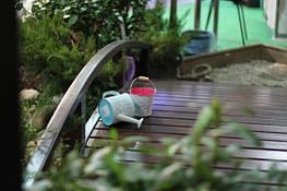 Пять стихий садового искусства
