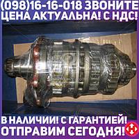 Вал первичный КПП в сборе МТЗ 800-952 (пр-во МТЗ) 74-1701030
