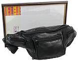 Поясная сумка, бананка кожаная Cavaldi SS110, фото 8