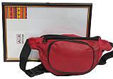 Кожаная поясная сумка Cavaldi 903-353 red, красный, фото 8