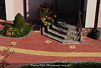 Тротуарная плитка Кирпич 200х100х40 - красный, фото 1