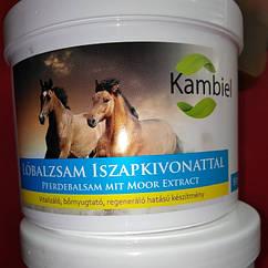 Kambiel lobalzsam iszapkivonattal pferdebalsam mit moor extract