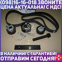 Ремкомплект грм VOLKSWAGEN Transporter IV 074 198 119 P (ПР-во INA) 530 0484 10
