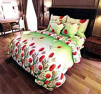 Набор постельного белья №с307 Евростандарт, фото 1