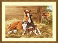 Набор для вышивания крестиком Лошадь и котенок. Размер: 39,5*27,5 см