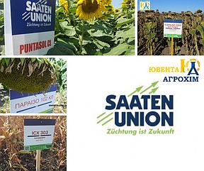 В наявності є гібриди насіння соняшнику та кукурудзи TM SAATEN-UNION