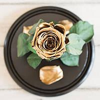 Стабилизированная роза в колбе Lerosh - Standart 33 см, Gold Золотая - 138928