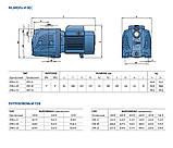 Насосная станция  Pedrollo HF JSWm 2CX /24CL (JSWm10MX/24), 0.75 кВт, 4,2 м3/ч, 50 м, фото 5