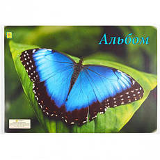 Альбом А4 20 листов, 120 (100) г/м², проклеен   , фото 2