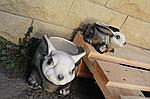 "Кашпо для цветов ""заяц"", фото 2"