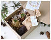 """Подарочный набор для девушки """"Лесной презент"""", фото 2"""